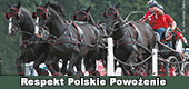 Respekt - Polskie Powożenie